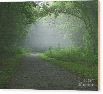Mystery Walk Wood Print by Douglas Stucky