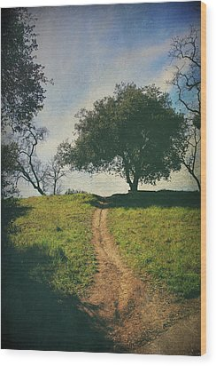It's Time To Get Up That Hill Wood Print by Laurie Search