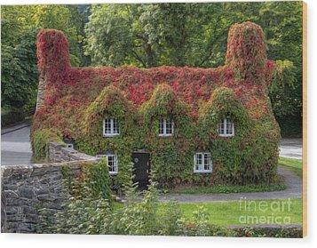 Ivy Cottage Wood Print by Adrian Evans