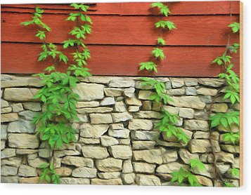 Ivy On Stone And Wood Wood Print by Jeffrey Kolker