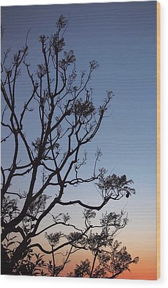 Jacaranda Sunset Wood Print