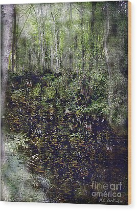 Jack Kell's Woods Wood Print by RC DeWinter