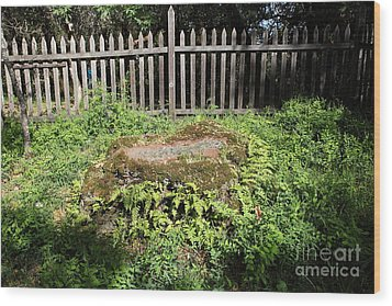 Jack London Grave Site 5d21984 Wood Print by Wingsdomain Art and Photography