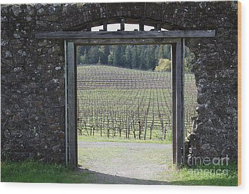 Jack London Ranch Winery Ruins 5d22132 Wood Print by Wingsdomain Art and Photography