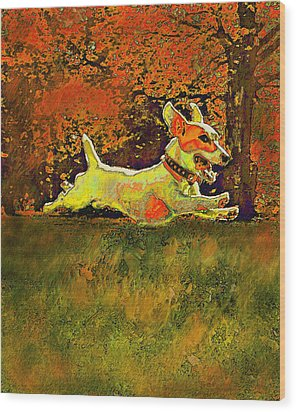 Jack Russell In Autumn Wood Print