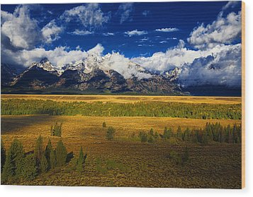 Wood Print featuring the photograph Jackson And Salt Lake Usa by Richard Wiggins