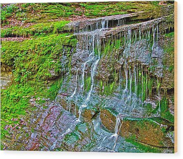 Jackson Falls At Mile 405 Natchez Trace Parkway-tennessee Wood Print by Ruth Hager