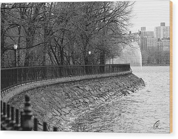 Jacqueline Kennedy Onassis Reservoir Ny Wood Print by Chris Thomas