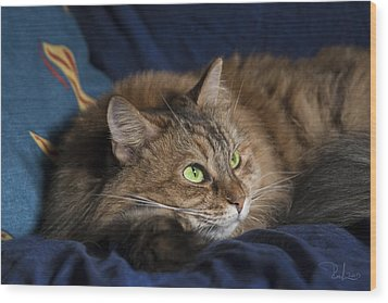 Jade Eyes In The Blue Wood Print