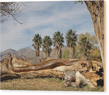 Jagger Wood Print by Dan Redmon