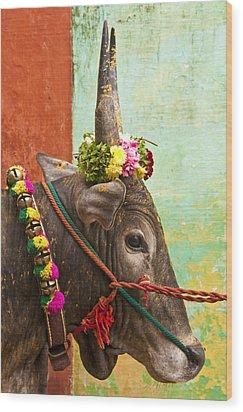 Wood Print featuring the photograph Jallikattu Bull by Dennis Cox WorldViews