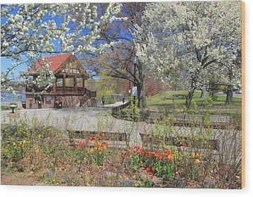 Jamaica Pond Boston In Spring Wood Print