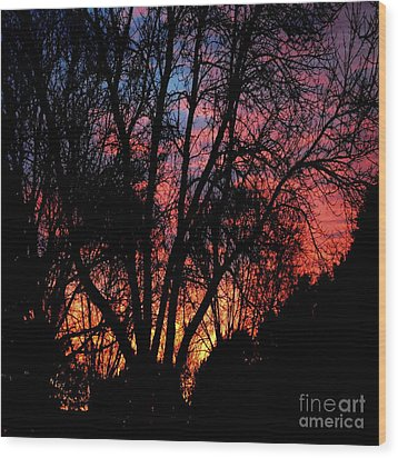 Wood Print featuring the photograph January Dawn by Luther Fine Art