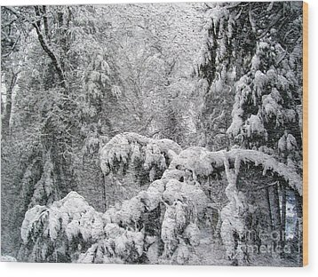 Wood Print featuring the photograph January by Irina Hays