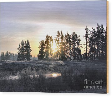 January Morning Wood Print by Rory Sagner
