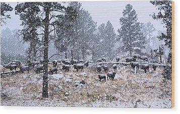January Snow Wood Print