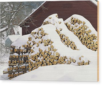 January Woodpile Wood Print by Alan L Graham
