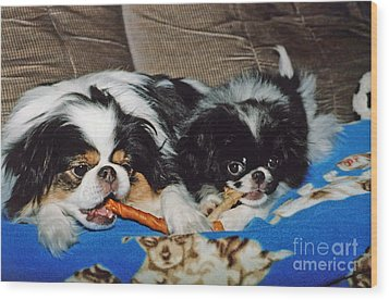Japanese Chin Dogs Hanging Out Wood Print by Jim Fitzpatrick