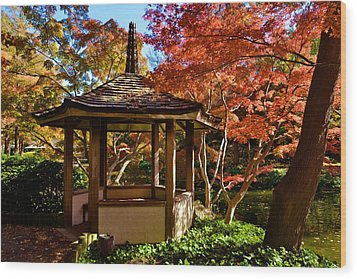 Wood Print featuring the photograph Japanese Gazebo by Ricardo J Ruiz de Porras