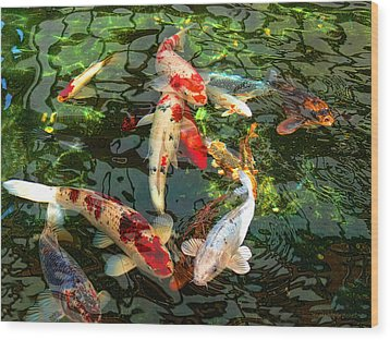 Japanese Koi Fish Pond Wood Print by Jennie Marie Schell