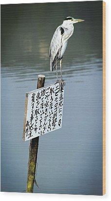 Japanese Waterfowl - Kyoto Japan Wood Print by Daniel Hagerman