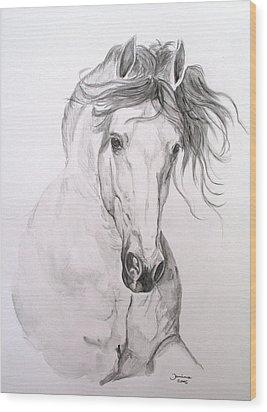 Jaqueton X Wood Print by Janina  Suuronen