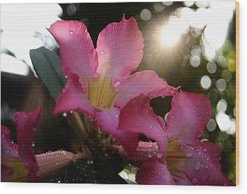 Wood Print featuring the photograph Jardin Du Matin by Miguel Winterpacht