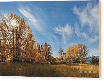 Jasper - Autumn Sky Chief Wood Print