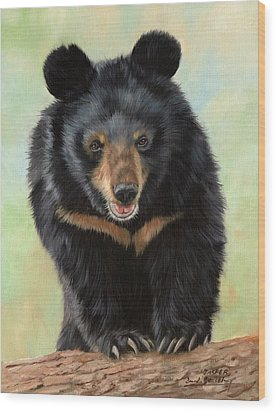 Jasper Moon Bear - In Support Of Animals Asia Wood Print by David Stribbling