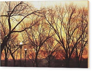 Jefferson Memorial - Washington Dc - 01135 Wood Print by DC Photographer