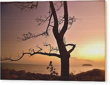 Jeju Sunset Wood Print by Yen