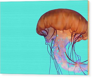 Jellyfish Wood Print by Tanias Reign