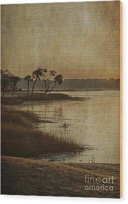 Jenkins Creek Dawn Wood Print by Terry Rowe