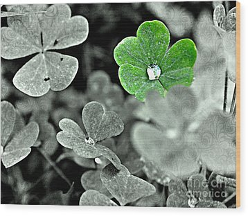 Jeweled Clover Wood Print by Carlee Ojeda