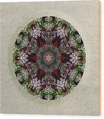 Jewels Of The Sea  Wood Print