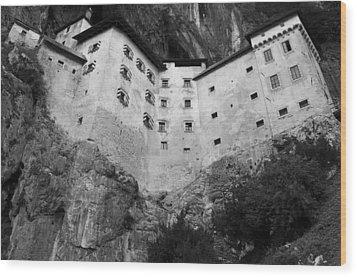 Jim Jam Predjama Castle Slovenia Wood Print