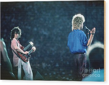 Jimmy Page And Robert Plant Wood Print