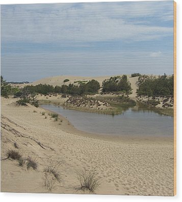 Wood Print featuring the photograph Jockey's Ridge 3 by Cathy Lindsey