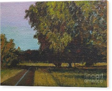 Jogging Trail At Two Rivers Park Wood Print by Amber Woodrum