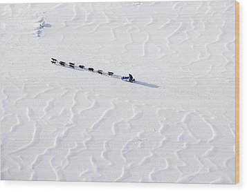 John Bakers Team Running Down Frozen Yukon River  Wood Print by Jeff Schultz