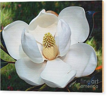 Wood Print featuring the photograph John's Magnolia by Barbara Chichester