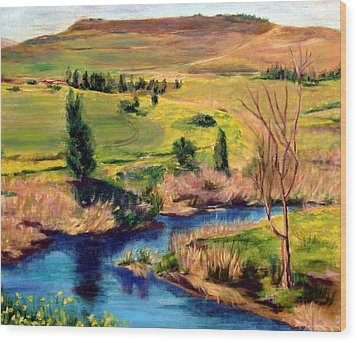 Jordan River In Israel Wood Print by Hannah Baruchi