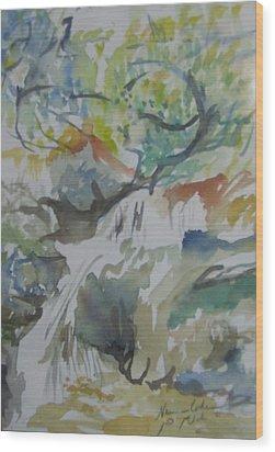 Jordan River Waterfall Wood Print by Esther Newman-Cohen