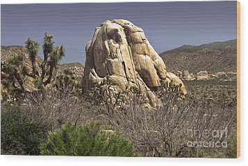 Joshua Tree - 02 Wood Print by Gregory Dyer