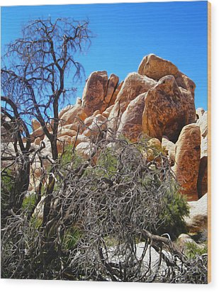 Joshua Tree - 06 Wood Print by Gregory Dyer