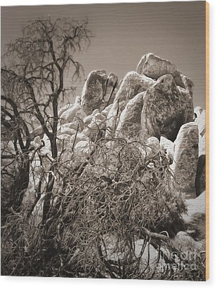Joshua Tree - 07 Wood Print by Gregory Dyer