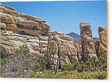 Joshua Tree - 10 Wood Print by Gregory Dyer
