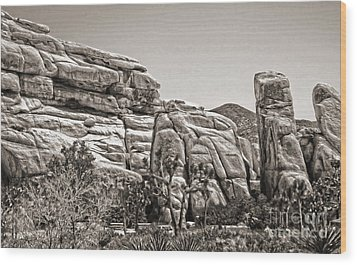 Joshua Tree - 11 Wood Print by Gregory Dyer