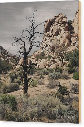 Joshua Tree - 16 Wood Print by Gregory Dyer