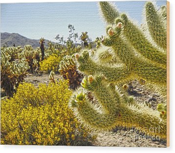 Joshua Tree Cholla Cactus Garden Wood Print by Gregory Dyer